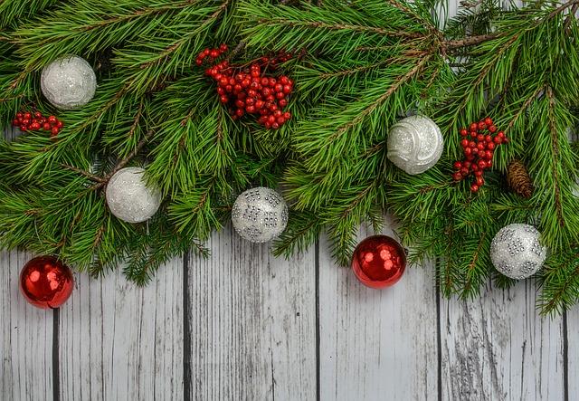 Bodensee Weihnacht 2020