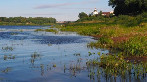 Ufer der Dwina